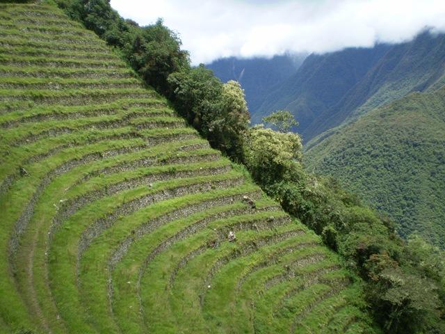 Agricultura de Montanha