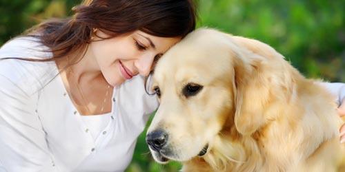 Prevenindo doenças em animais domésticos!