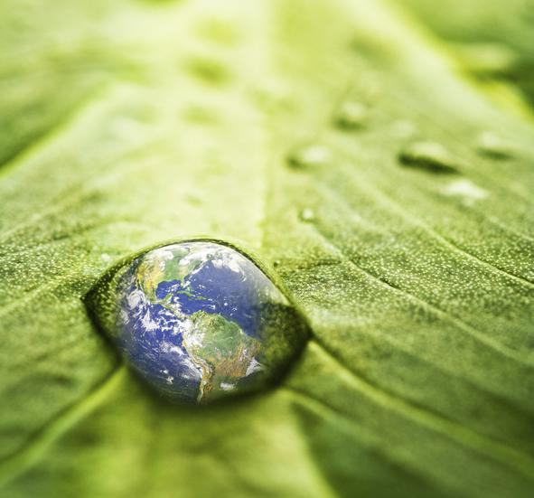 Sustentabilidade a chave para o desenvolvimento consciente