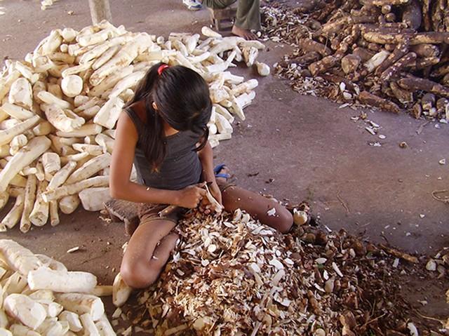 Infantil Trabalho