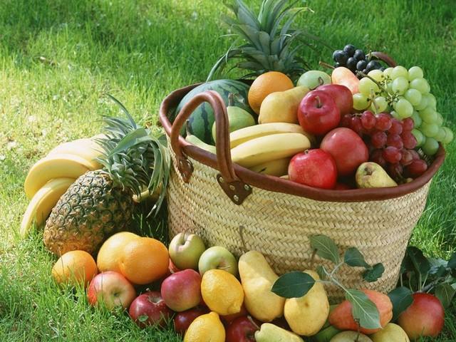 Frutas Outono