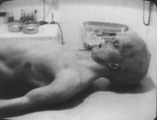 Alienígenas existem ou não