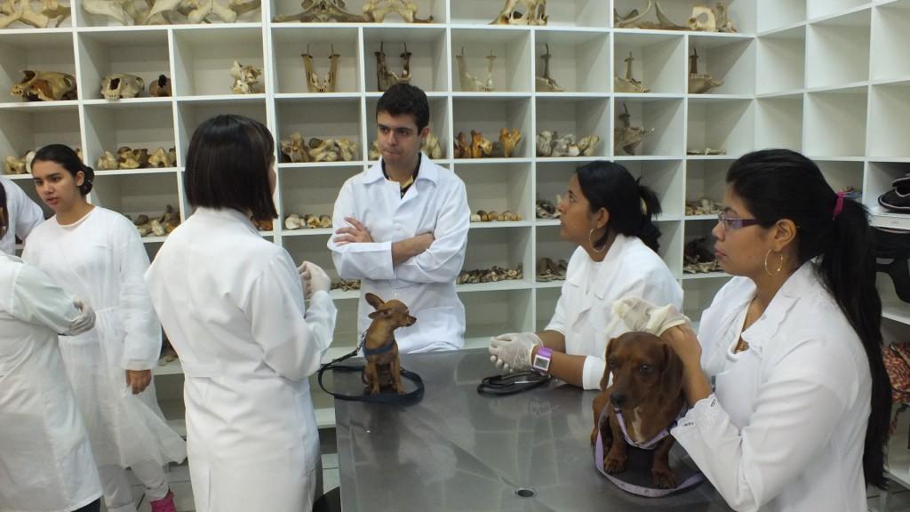 39 cidades poderão receber novos cursos de medicina no Brasil