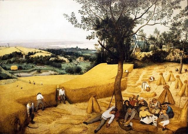 Agricultura Idade Média