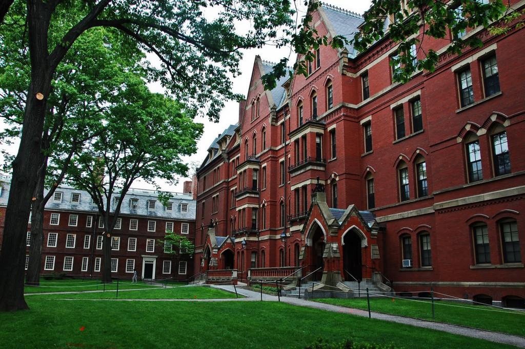 Brasileiras vencem concurso de ideias promovido pela Universidade Harvard 2