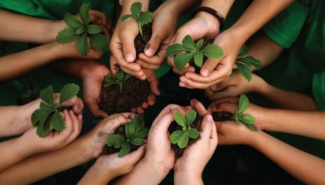 Preservação do meio ambiente - Geografia - Colégio Web