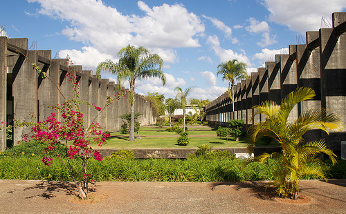 Universidade de Brasília abre processo seletivo para diplomados 2