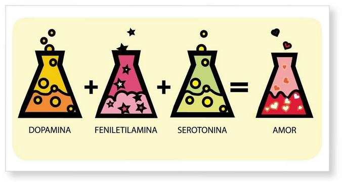 amor explicado pela química