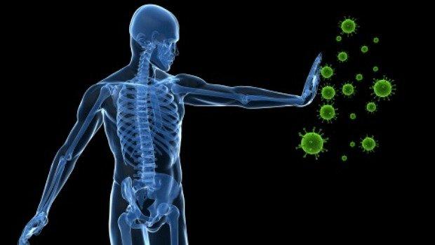 Sistema Imunologico Forte