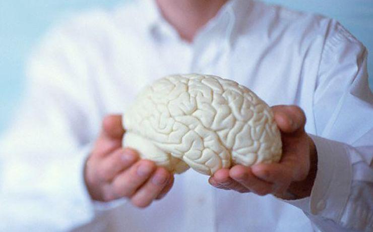 Neurocirurgião Profissão