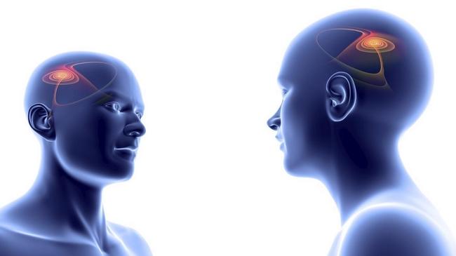 Espelhos Neurônios
