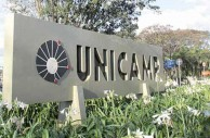 Saiba o que fazer durante as fases da Unicamp 2017