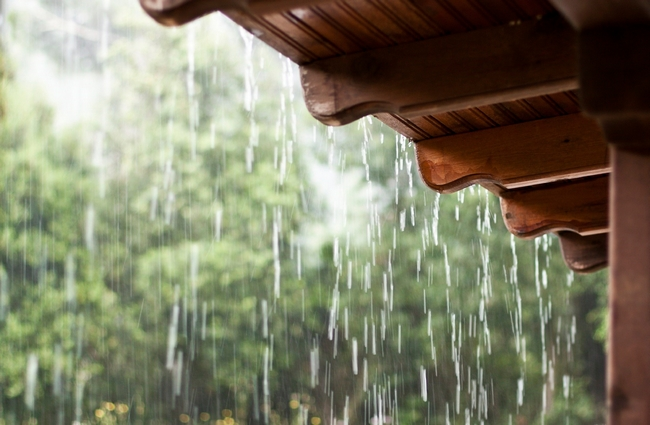 Tipos Chuva