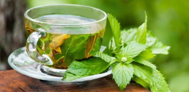 Como plantar chás em casa