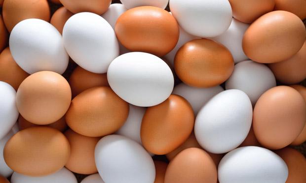 Melhores tipos de ovos para saúde