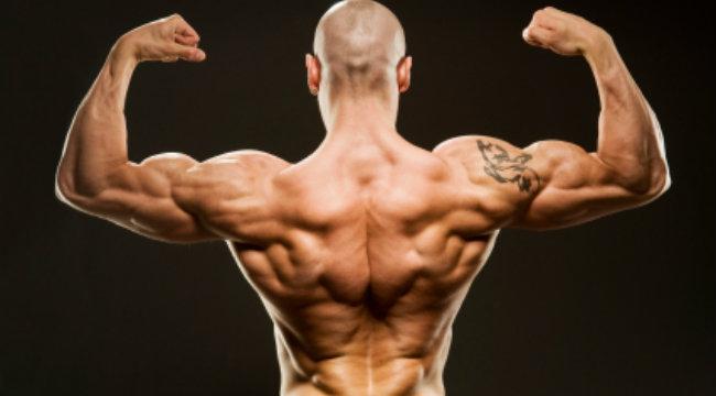 Por que os músculos crescem