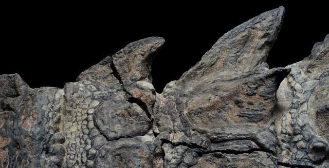 Conheça o dinossauro encontrado que parece uma estátua