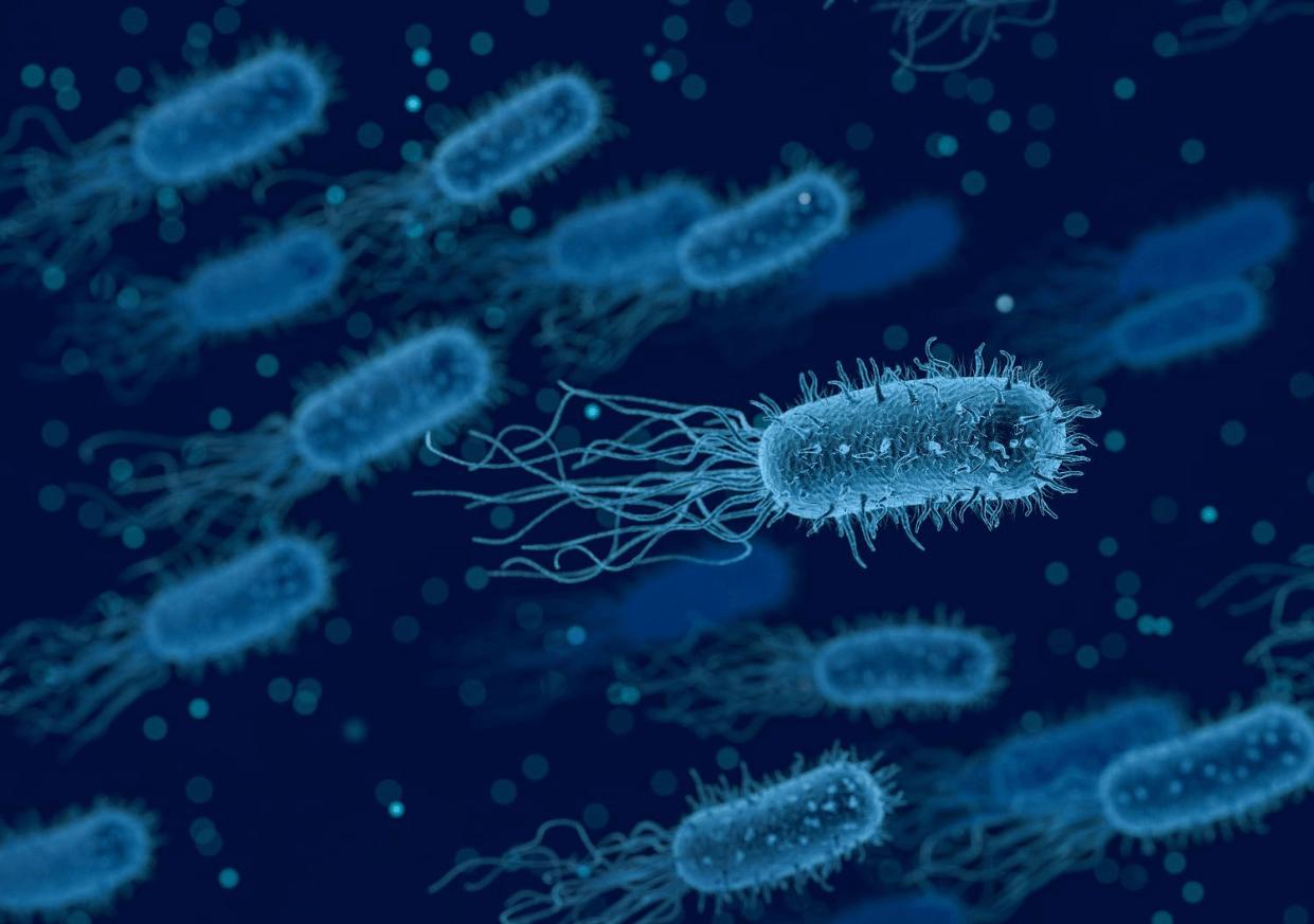 """Micróbios de 100 milhões de anos são """"ressuscitados"""" em laboratório"""