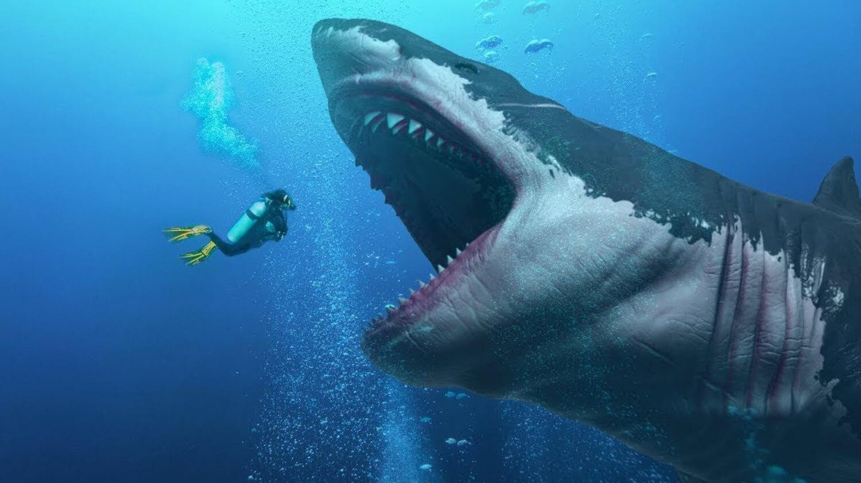 Confira algumas curiosidades sobre Megalodon, o tubarão gigante
